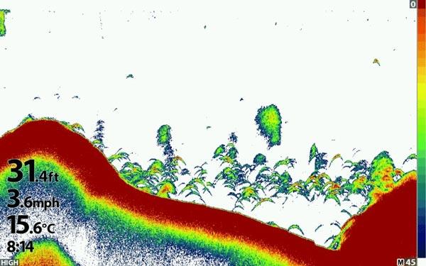Humminbird Dual Spectrum CHIRP